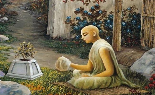Why Do We Worship Tulsi Plant