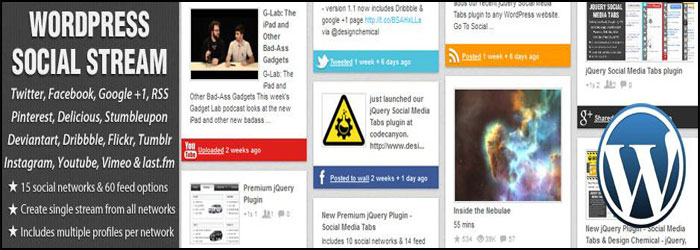 WordPress Social Stream WordPress Plugin