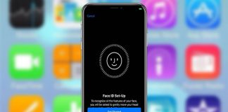 Setup and Use Face ID on iPhone X