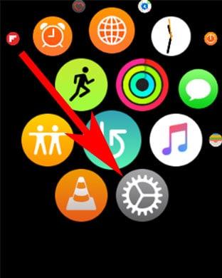 Open Settings on Apple Watch