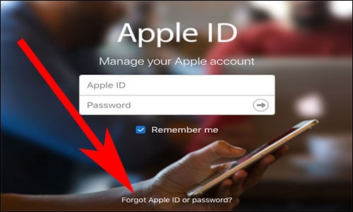 Open AppleID. Apple.com and Click on Forgot Apple ID Password