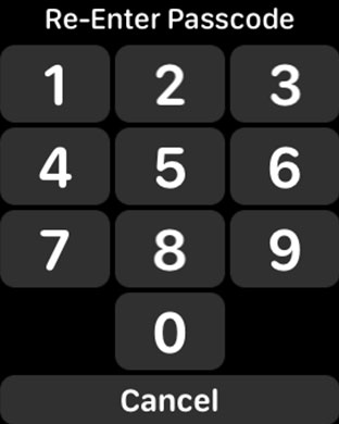Type New Passcode on Apple Watch