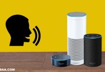 How to Delete Amazon Echo Voice Data