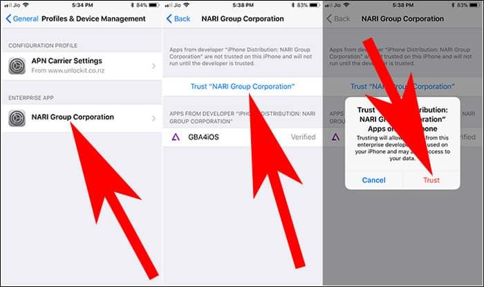 Trust GBA4iOS 2.1 Profile on iPhone
