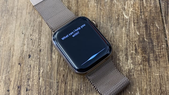 Use Siri On Your Apple Watch